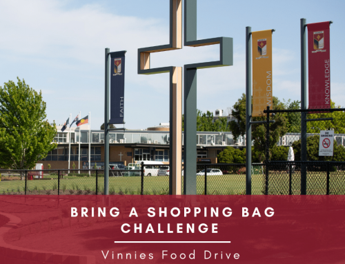 Bring a Shopping Bag Challenge – Vinnies Food Drive